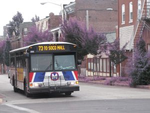 MetroBus #73 on Grand - Share the Road
