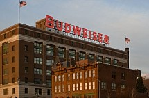 Budweiser-Sign-Size-Reduced-2013-01-252
