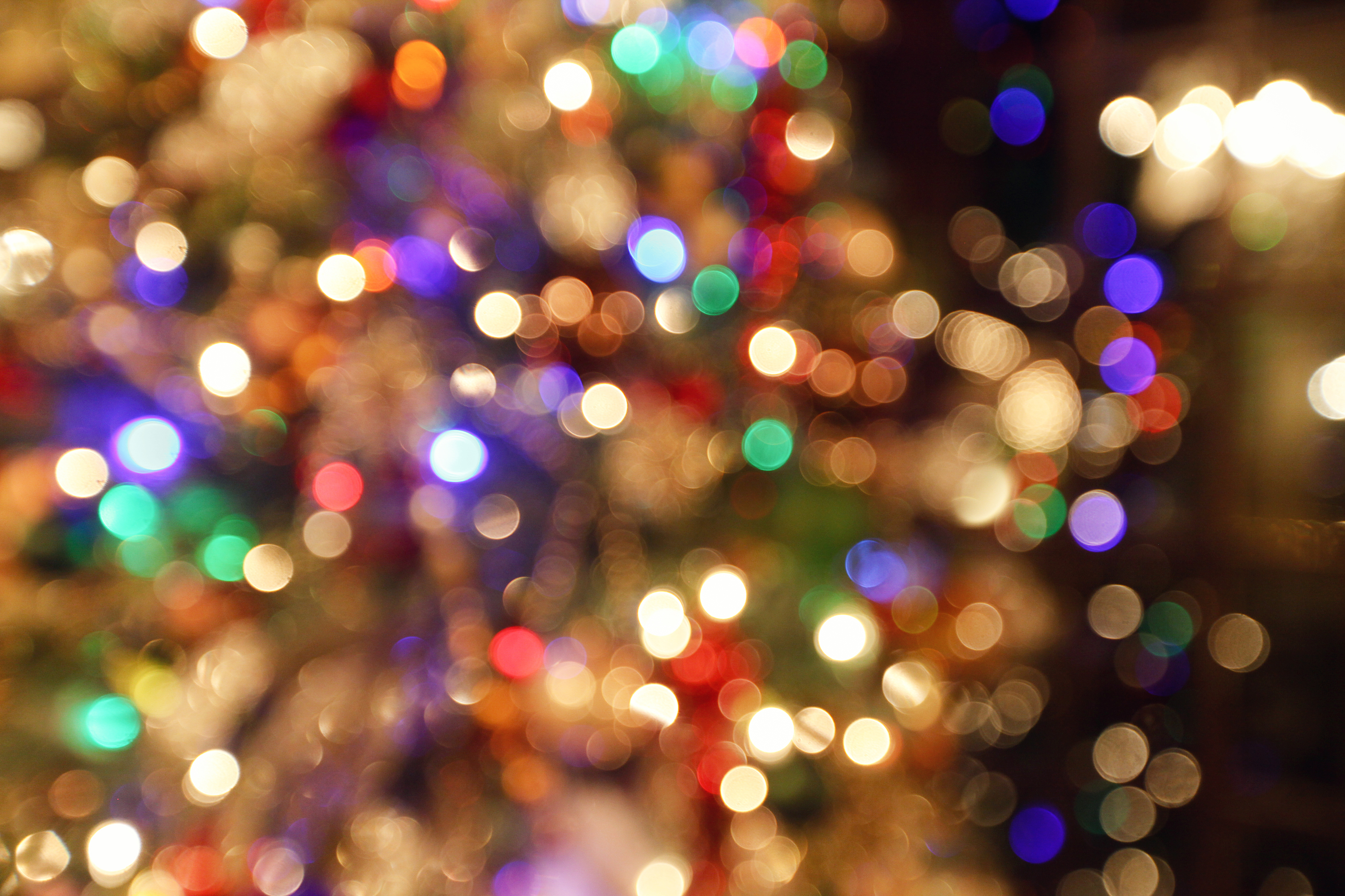 Christmas Light Displays In St Louis.Take Transit To These Holiday Light Displays Around St